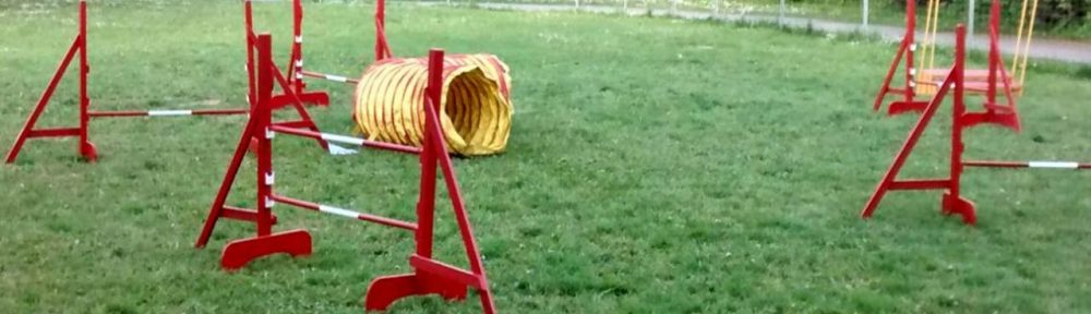 Aktion Hund!
